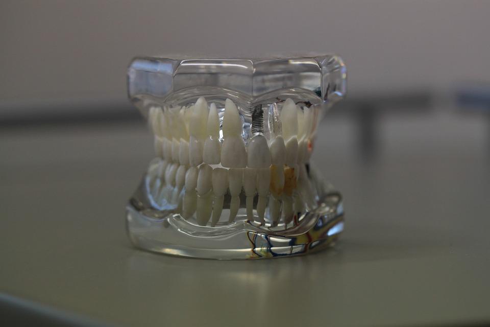 dentistry-teeth